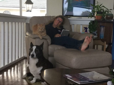 Trudi, Ginger and Bart sitting on/near a chair.